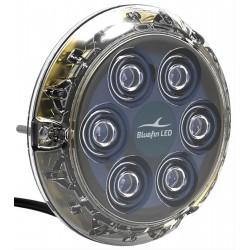 Luce subacquea Piranha P6 nitro