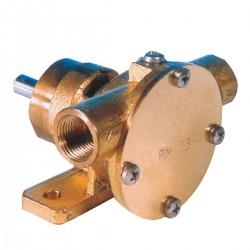 Pompa PM15 autoadescante in bronzo per raffreddamento motori