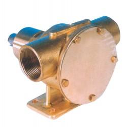 Pompa PM40 autoadescante in bronzo per raffreddamento motori